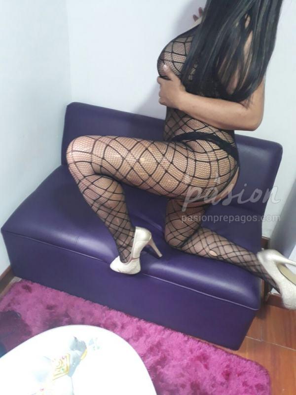 Foto 1 de CATALINA 3204526411