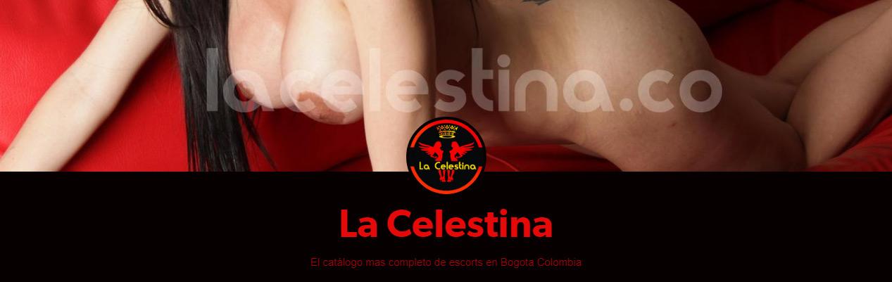 la-celestina-escorts-prepagos-putas-bogota